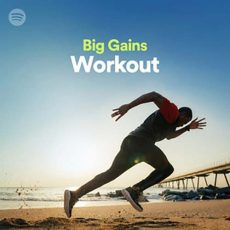 Big Gains Workout
