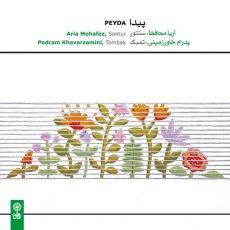Aria Mohafez Peyda