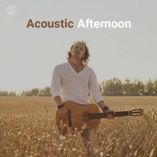 Acoustic Afternoon (Playlist By MELOVAZ.NET)