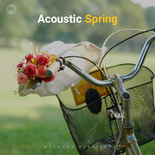 Acoustic Spring