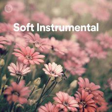 Soft Instrumental