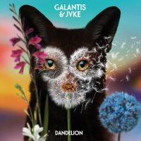 Galantis Jvke Dandelion