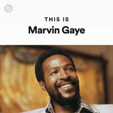 This Is Marvin Gaye
