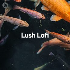 Lush Lofi