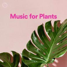 Music for Plants Playlist