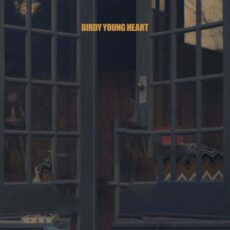 Birdy Young Heart