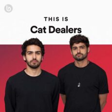 This Is Cat Dealers