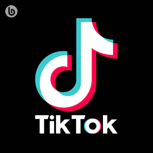 Tik Tok Hits Summer 2021