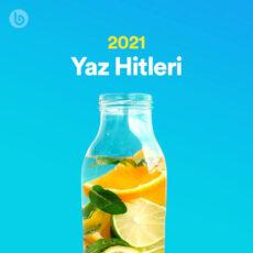 Yaz Hitleri