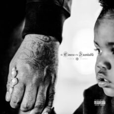Lloyd Banks The Course of the Inevitable