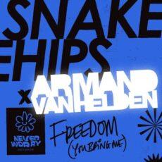Snakehips Armand van Helden Freedom