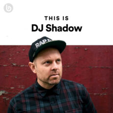 This Is DJ Shadow