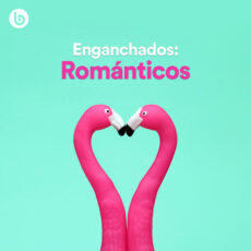 Enganchados Románticos