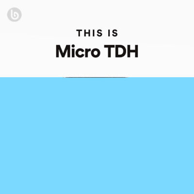 This Is Micro TDH