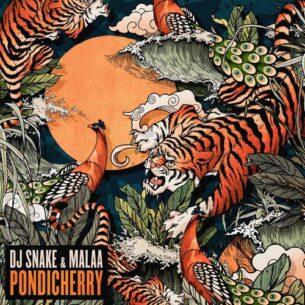 DJ Snake Malaa Pondicherry